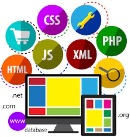 زبان طراحی سایت