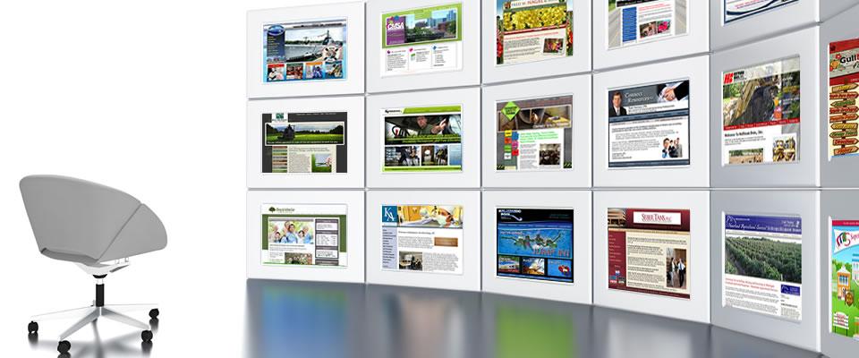 نمونه کارهای طراحی سایت شرکت دود
